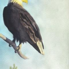 Eagle Dawn